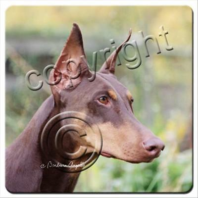 Doberman Pinscher Red Cropped Ears Dog Rubber Backed Coasters Set of 4
