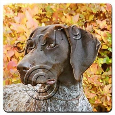 German Shorthaired Pointer Dog Rubber Backed Coasters Set of 4