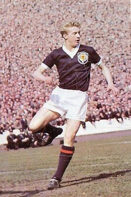 Denis Law Of Manchester United, Manchester City + Scotland Good