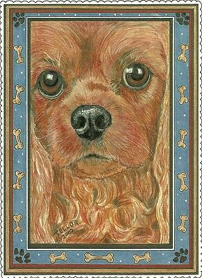 Sweet Ella Ruby Cavalier King Charles Spaniel blank note card