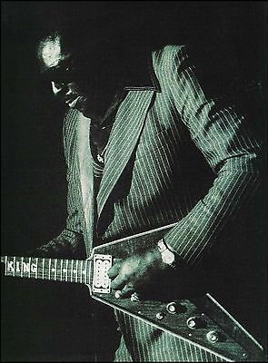 Albert King with his Gibson Flying V guitar 8 x 11 b/w pin-up photo print