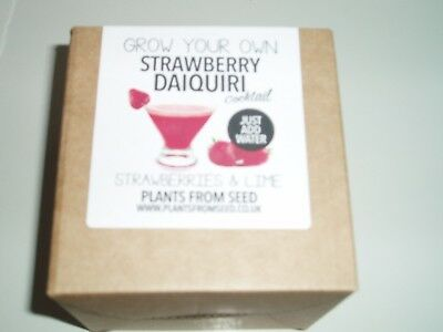 Plants From Seed - Grow Your Own Strawberry Daiquiri Plant Kit New