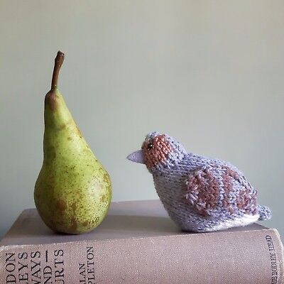 Partridge knitting kit - Noel the Partridge - knit a cute bird for Christmas!