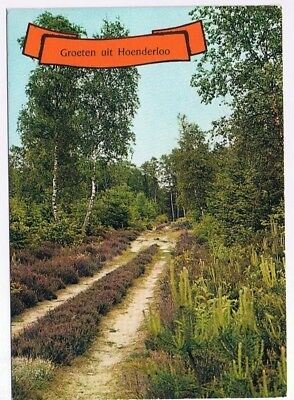 Holland Netherlands Postcard Hoenderloo Country Road Lavender