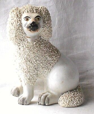 C19Th Staffordshire Seated Poodle