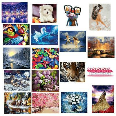 Acrylic DIY Paint By Numbers Kit Digital Art Oil Painting on Canvas 16''x20""