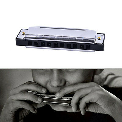 Blues Harmonica 10 Holes Key of C Musical Instrument Stainless Steel DSUK