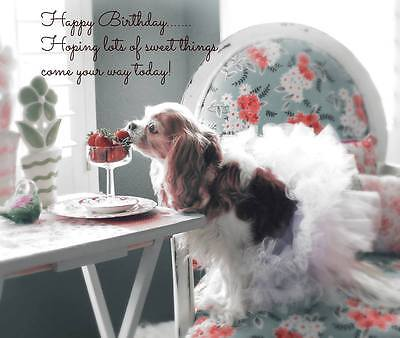 Birthday Wishes For You Cavalier King Charles Spaniel small blank Note Card