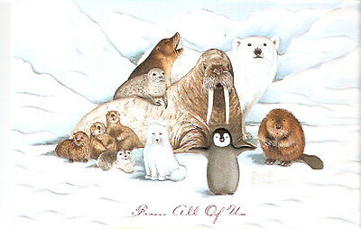 Walrus Beaver Penguin Seal Otter Embossed Christmas Cards Box of 16