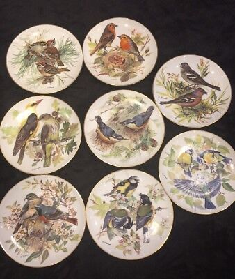 WWF Plates Band's Songbirds Of Europe