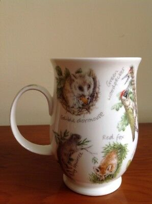 Dunoon Fine Bone China Mug - Woodlands Secrets By Jane Fern