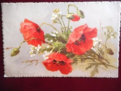 Carte Postale Ancienne Catharina Klein - Coquelicots