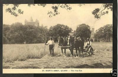 JFG Early Postcard, Harvesting by Hand & Horse, Quarr Abbey, Binstead, Ryde