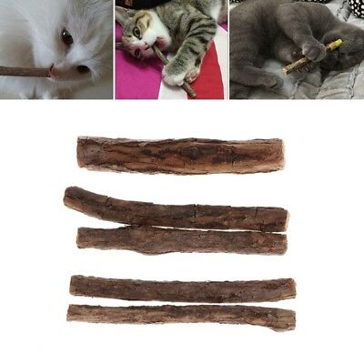 Cat Cleaning Teeth Pure Natural Catnip Molar Toothpaste Stick Toys Pet Product