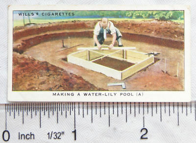 1938 Wills Garden Hints No. 4 Making a water-Lily Pool (A)