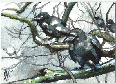 Game of Thrones Season 7 Ravens watercolour Sketch Card PSC ACEO Lee Lightfoot