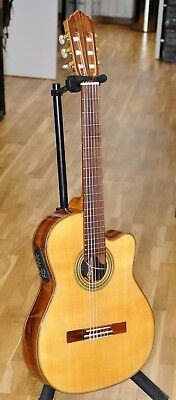 Giannini Classical Nylon CTW Elec GWNFLE X - Made In Brazil - NEW Free Shipping