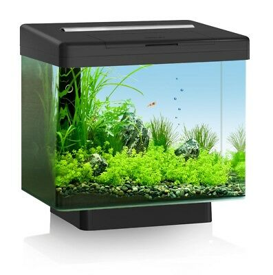 Juwel Vio 40 Black Aquarium- LED Lighting, BioFlow Mini, AquaHeat