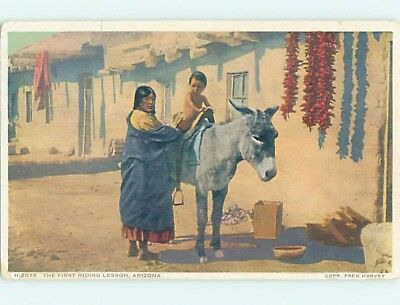 Pre-Linen ARIZONA NATIVE INDIAN CHILD TAKES FIRST DONKEY RIDING LESSON HL6775