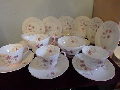 Shelley English Fine Bone China Gorgeous 20 Pice Tea Set With Pink Trim