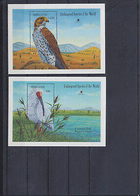 054965 Vögel Birds Sierra Leone Block 114/15 ** MNH Year 1989