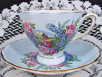 Colclough Scenic Pink Roses Horse Shoe Blue Tea Cup And Saucer