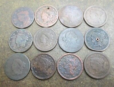 Twelve United States Large Cents in Poor Condition No Reserve