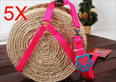 Practical Bust 25*48 CM Rope 120 CM Pink Nylon Leash Wholesale Lots 5 PCS