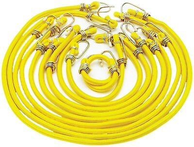 Project Pro 10 Piece Bungee Stretch Cord Assortment Set 1455