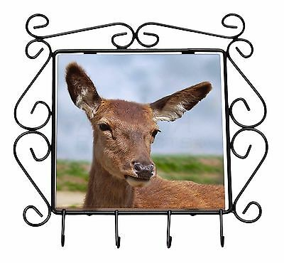 A Pretty Red Deer Wrought Iron Key Holder Hooks Christmas Gift, ADE-2KH