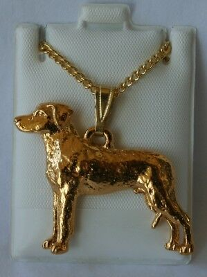 Rhodesian Ridgeback Dog 24K Gold Plated Pewter Pendant Chain Necklace Set