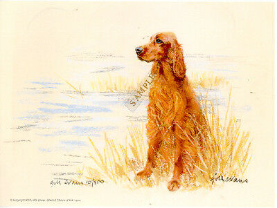 Irish Setter Limited Edition Art Print by UK Artist Gill Evans Waiting