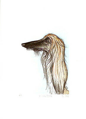 Afghan Hound Limited Edition Print by UK Artist Elle Wilson A Little Affable