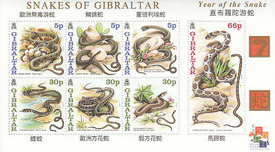 Gibraltar MNH Sc 870a Value $ 10.00 US $$ Lunar Year of The Snake