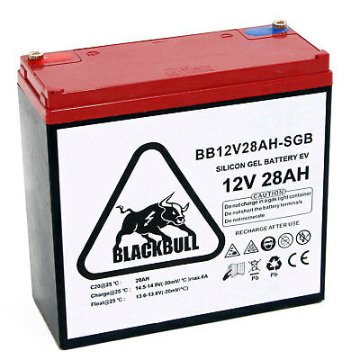 BLACKBULL professsionnel 12V 28Ah Batterie CYCLES raccordement à vis GEL PLOMB