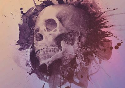 Skull Grunge Print Art Poster Picture A3 Size Gz1822