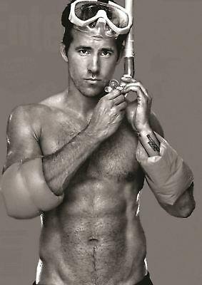 Ryan Reynolds Print Art Poster Picture A3 Size Gz1799