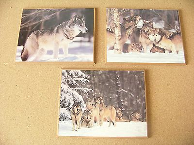 "Wolf Wolves Three pictures mounted on particle board wall hangings 7.9"" x 9.9"""
