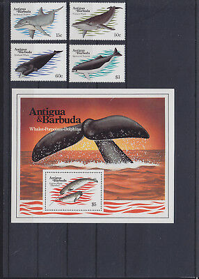055902 Wale Whales Antigua & Barbuda 714-17 + Block 71 ** MNH Year 1983