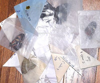 /BUTTERFLY/MOTH/UNMOUNTED Sm Collection Lot To PRACTICE MOUNTING