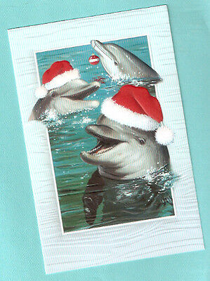 Bottlenose Dolphin Santa Hat Embossed Christmas Cards Box of 16 Dashing Dolphins
