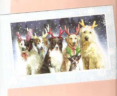 Border Collie Bearded Labrador Reindeer Games Embossed Christmas Cards Box 16
