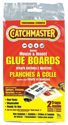 CATCHMASTER - Baited Mouse and Insect Glue Boards - 2 Traps