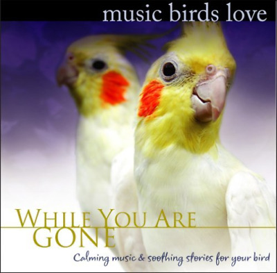 Bradley Joseph-Music Birds Love: While You Are Gone  CD NEW
