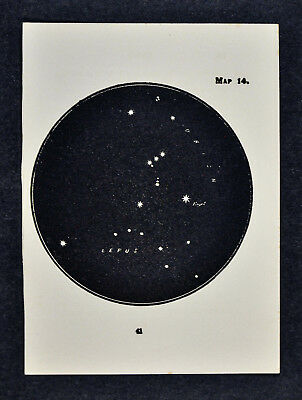 1903 Gall Star Map 14 Orion Constellation Hunter Betelgeux Rigel Lepus Hare Sky