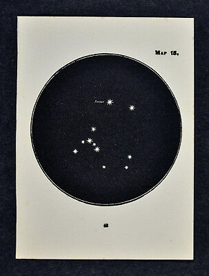 1903 Gall Star Map 15 Canis Major Great Dog Constellation Sirius - Miniature Sky