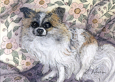 Long haired chihuahua dog pup orig ACEO painting longcoated chi by Susan Alison