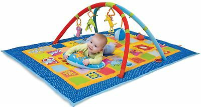 Taf Toys CURIOSITY GYM 2 Stage Baby/Child Developmental Activity Toy Play Mat BN