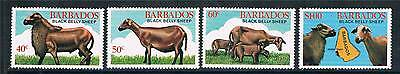 Barbados 1982 Black Bellied Sheep SG693/6 MNH