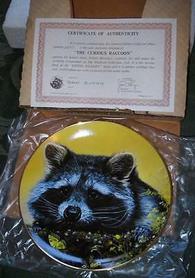 """Collector Plate Curious Raccoon Stratford Collection Ltd """"Little Wildlife"""""""
